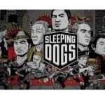 Sleeping Dogs PC Oyun Yükleme Full